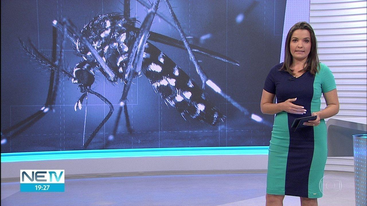 Pernambuco registra primeira confirmação de morte por dengue, em 2018