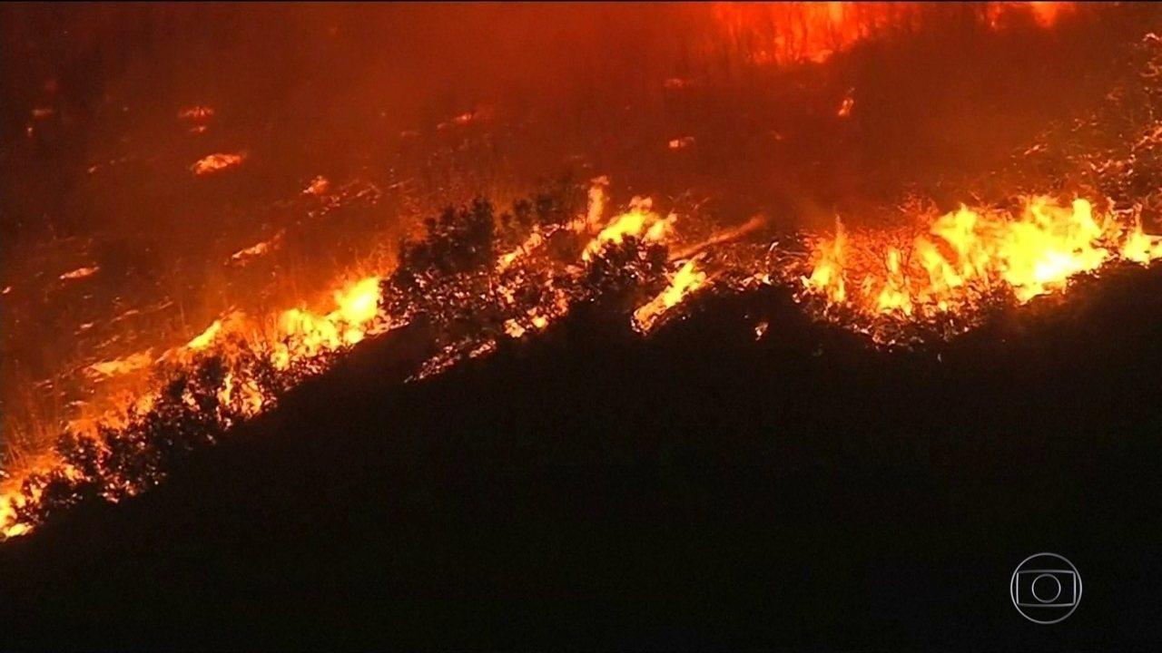 Califórnia, nos EUA, sofre com o maior incêndio da história do estado