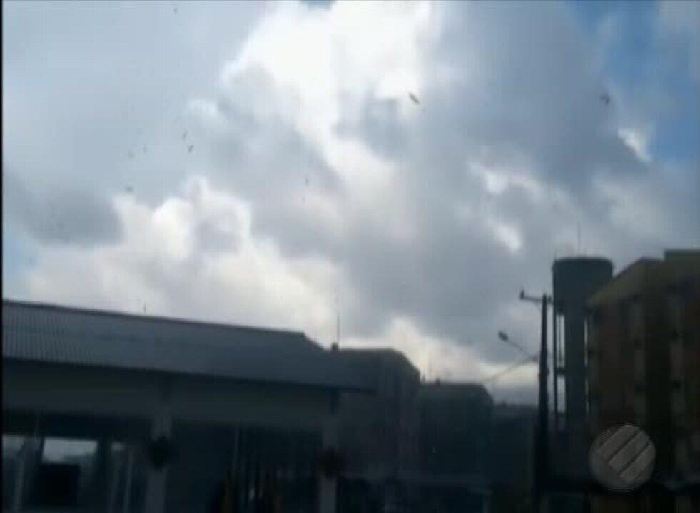 Famílias atingidas por vendaval em Ananindeua devem receber apoio da prefeitura