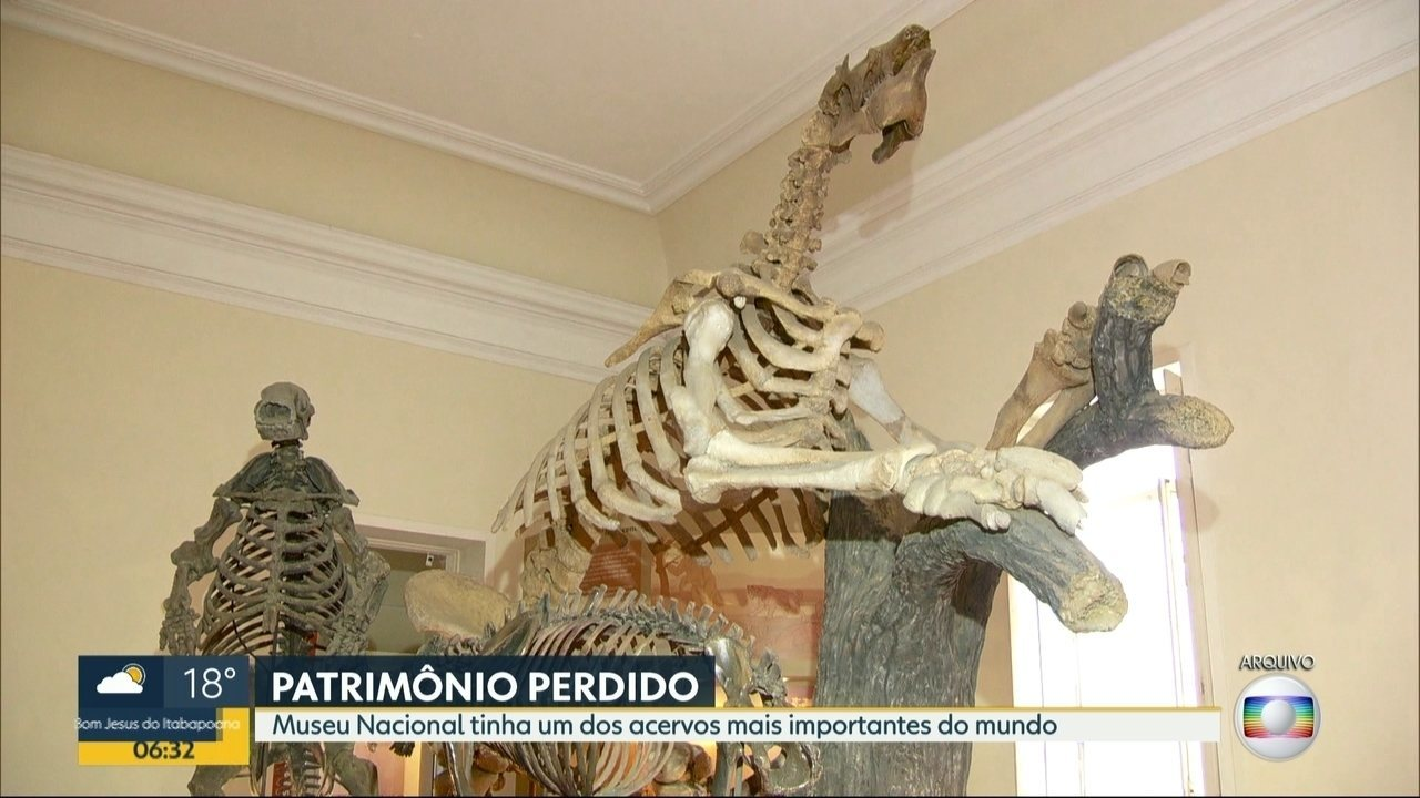 Entenda a importância do acervo do Museu Nacional