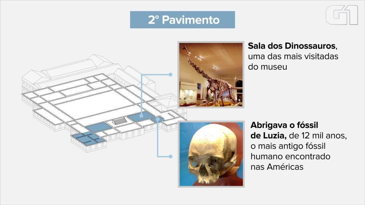 Animação mostra o que havia no Museu Nacional
