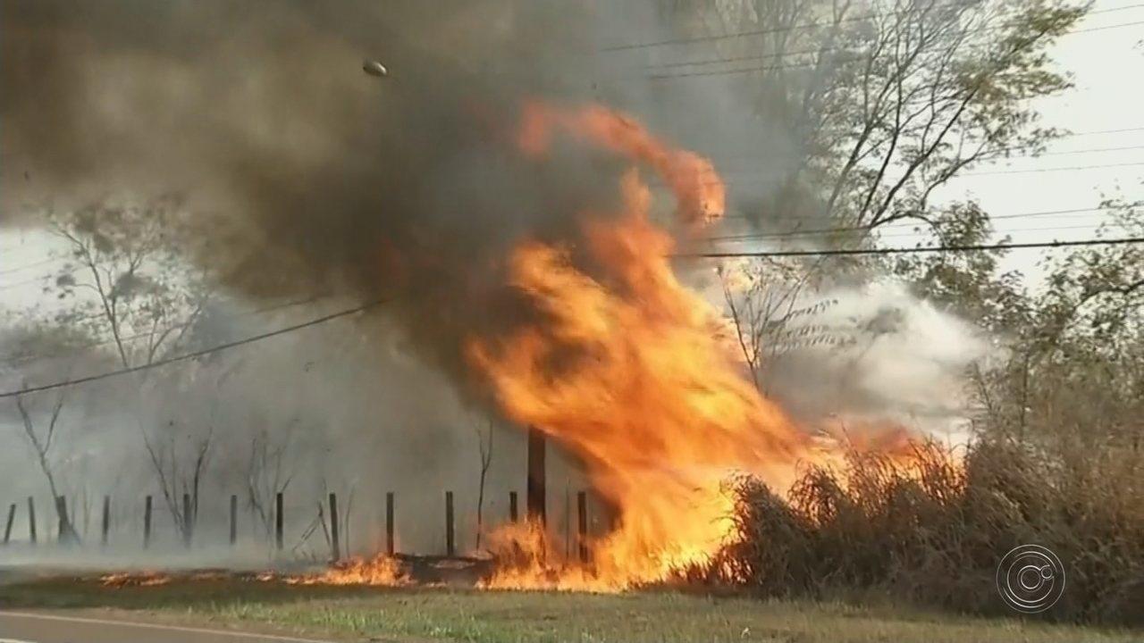 Bombeiros tentam controlar incêndio em reserva ambiental de Castilho há mais de 30h