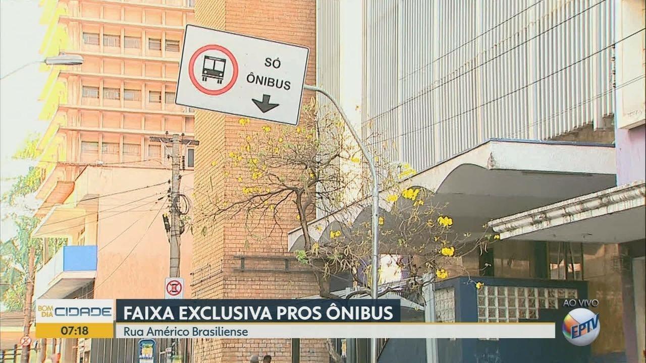 Faixa exclusiva de ônibus é implantada na Rua Américo Brasiliense em Ribeirão Preto
