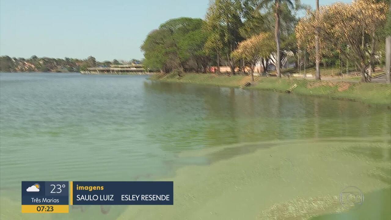Lagoa da Pampulha recebe esgoto de Contagem e de BH