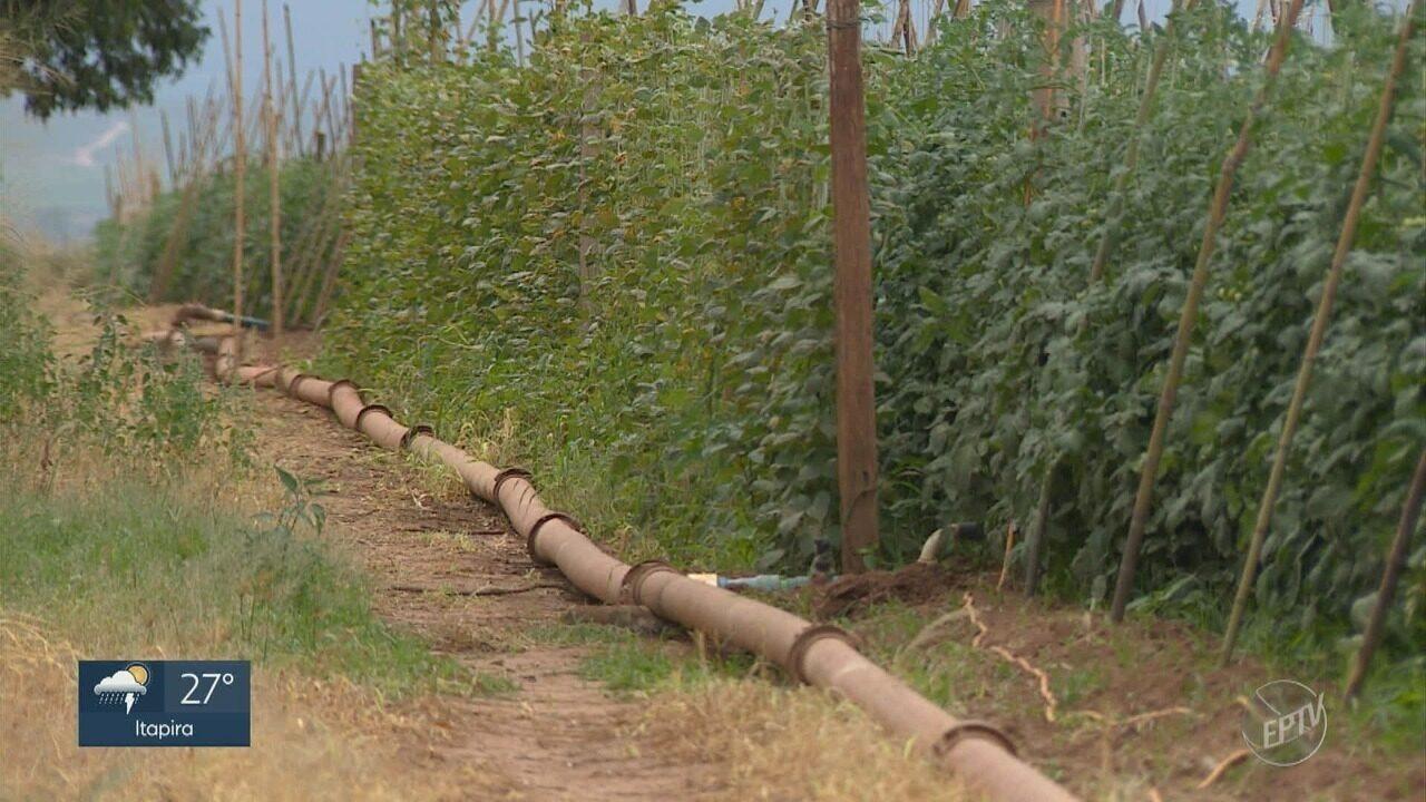 Canos de alumínio usados na irrigação são furtados com frequência em Sumaré