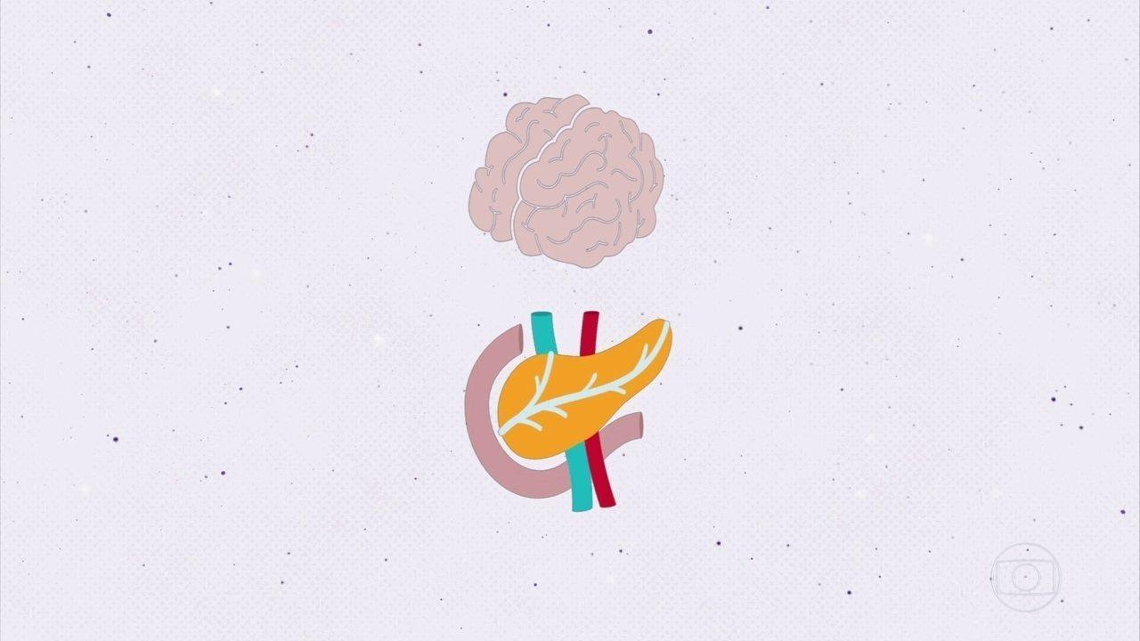 Projeto Educação: entenda o que é diferenciação celular