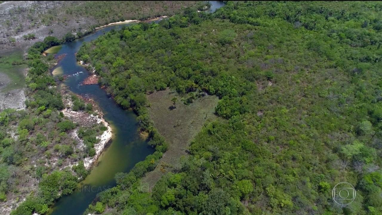 Investigações da PF apontam onde ficava laboratório de cocaína de Pablo Escobar no TO