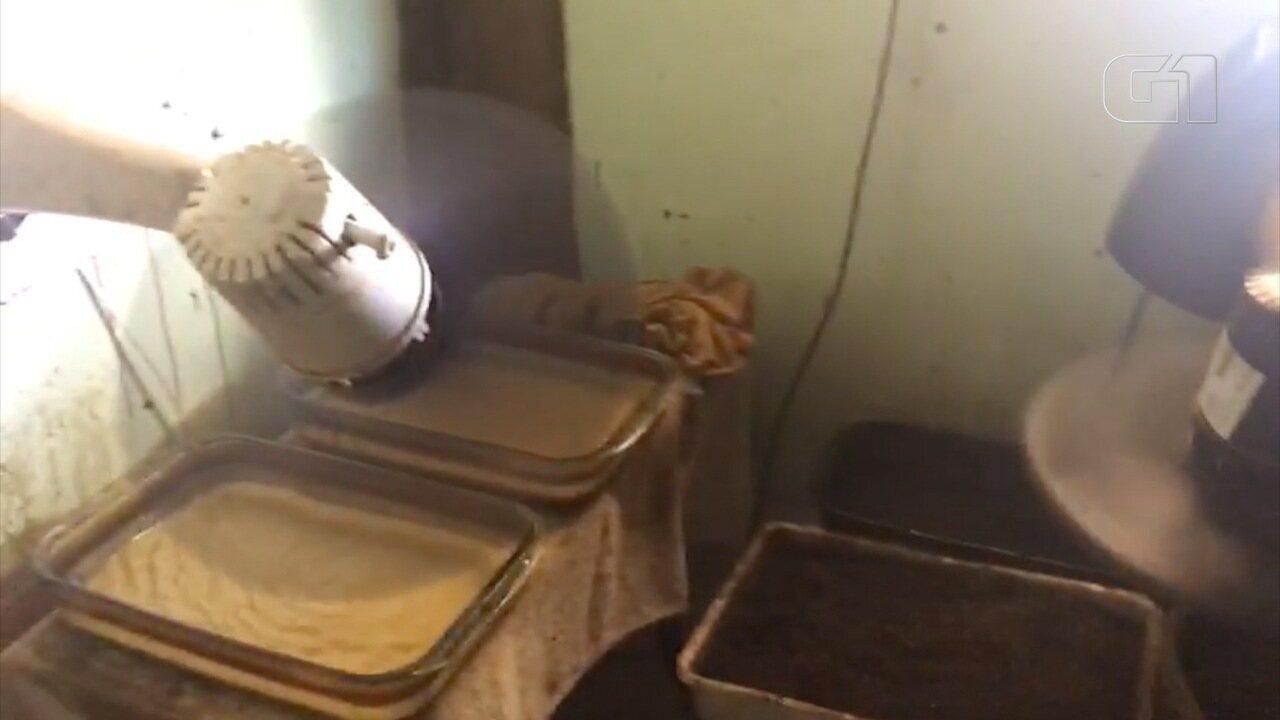 Família foi presa em flagrante com laboratório de drogas em casa