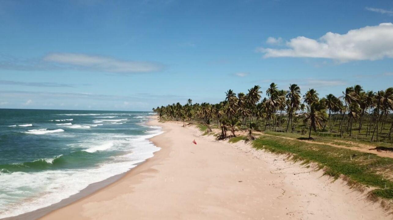 Natureza preservada na Bahia