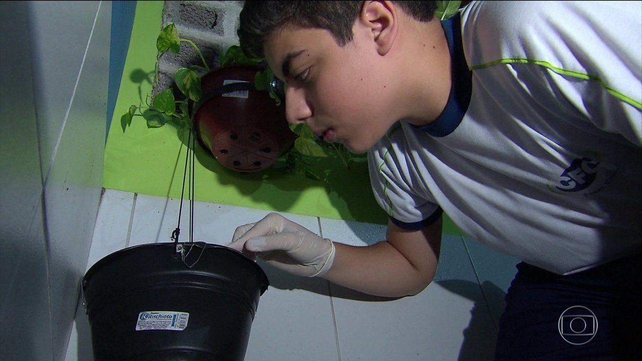 Dia Nacional de combate à dengue tem mobilizações em todo o país