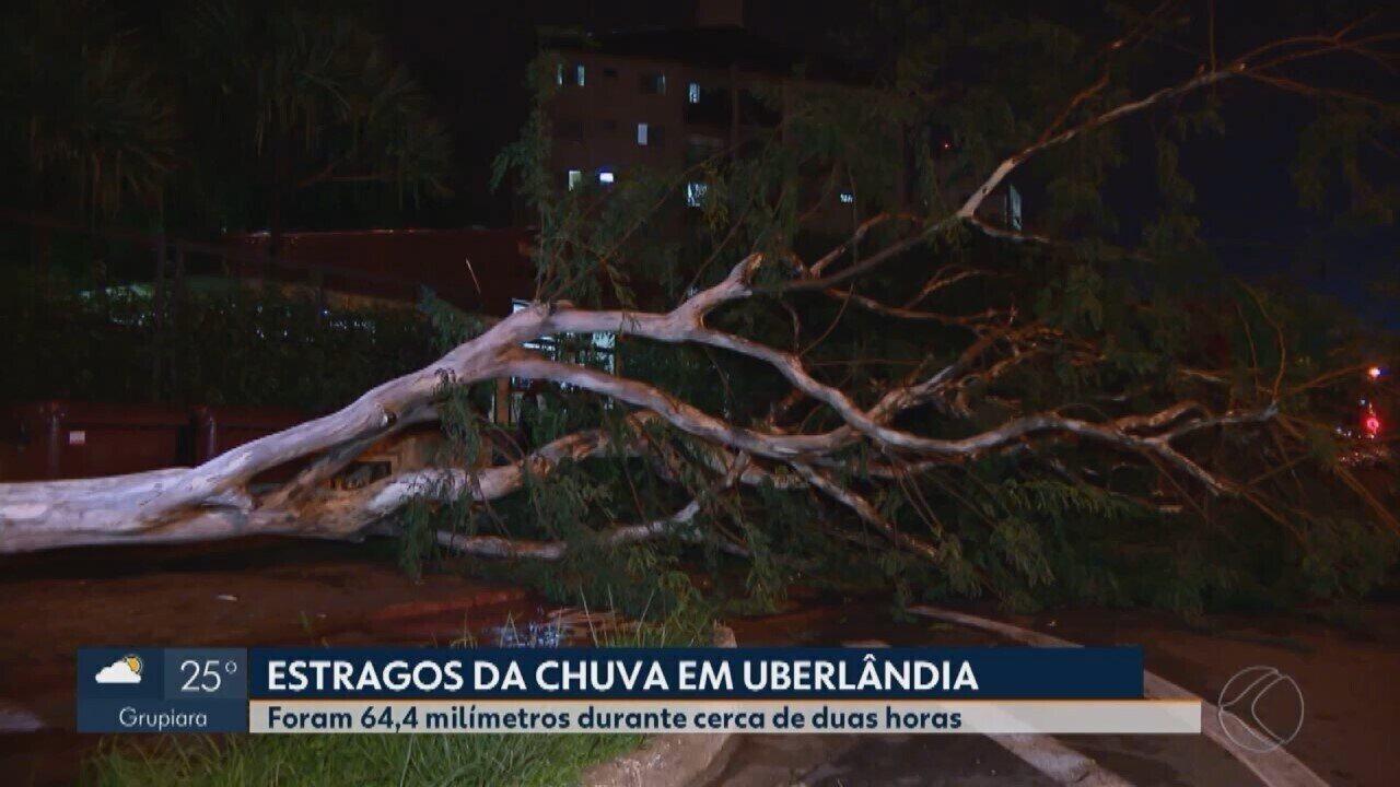 Após tempestade, reparos são feitos em diversos pontos de Uberlândia