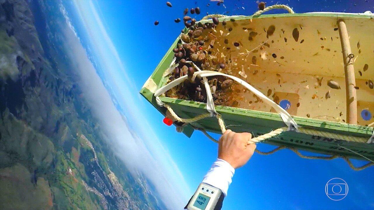 Luigi Cani semeia 1 milhão de sementes no Parque Estadual Serra do Rola Moça