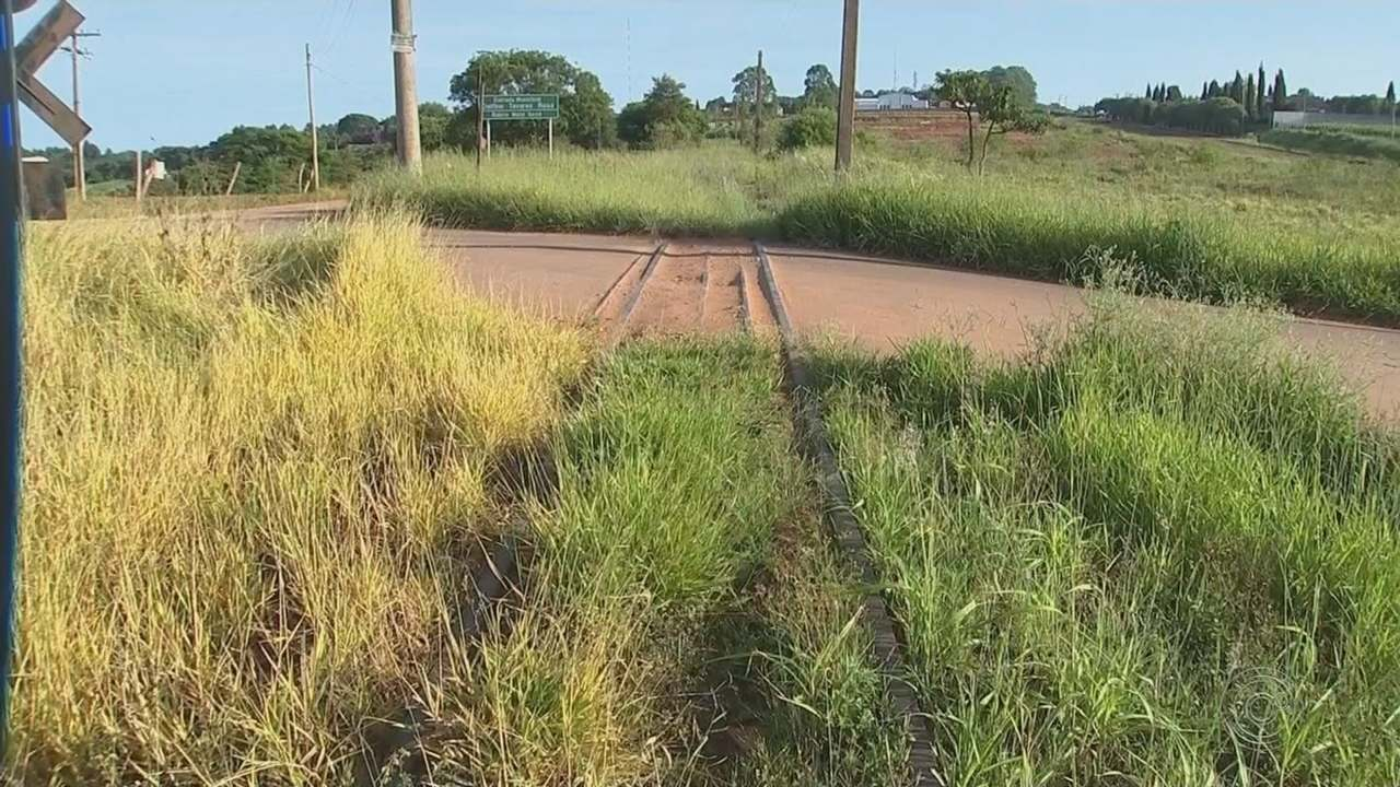 Mato alto e acúmulo de lixo preocupam quem mora perto das linhas férreas