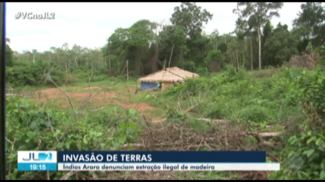 Indígenas da etnia Arara estão preocupados com invasão de madeireiros em terras no Pará