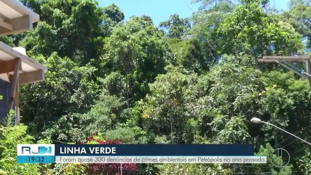 Quase 300 denúncias de crimes ambientais registradas em Petrópolis em 2018