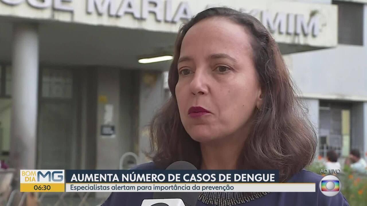 Quase 30 mil casos de dengue são registrados em MG em 2018