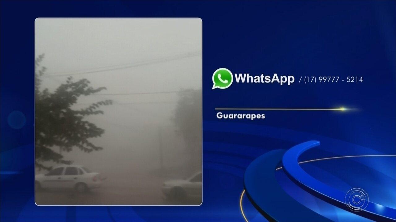 Chuva forte derruba árvores em Guararapes