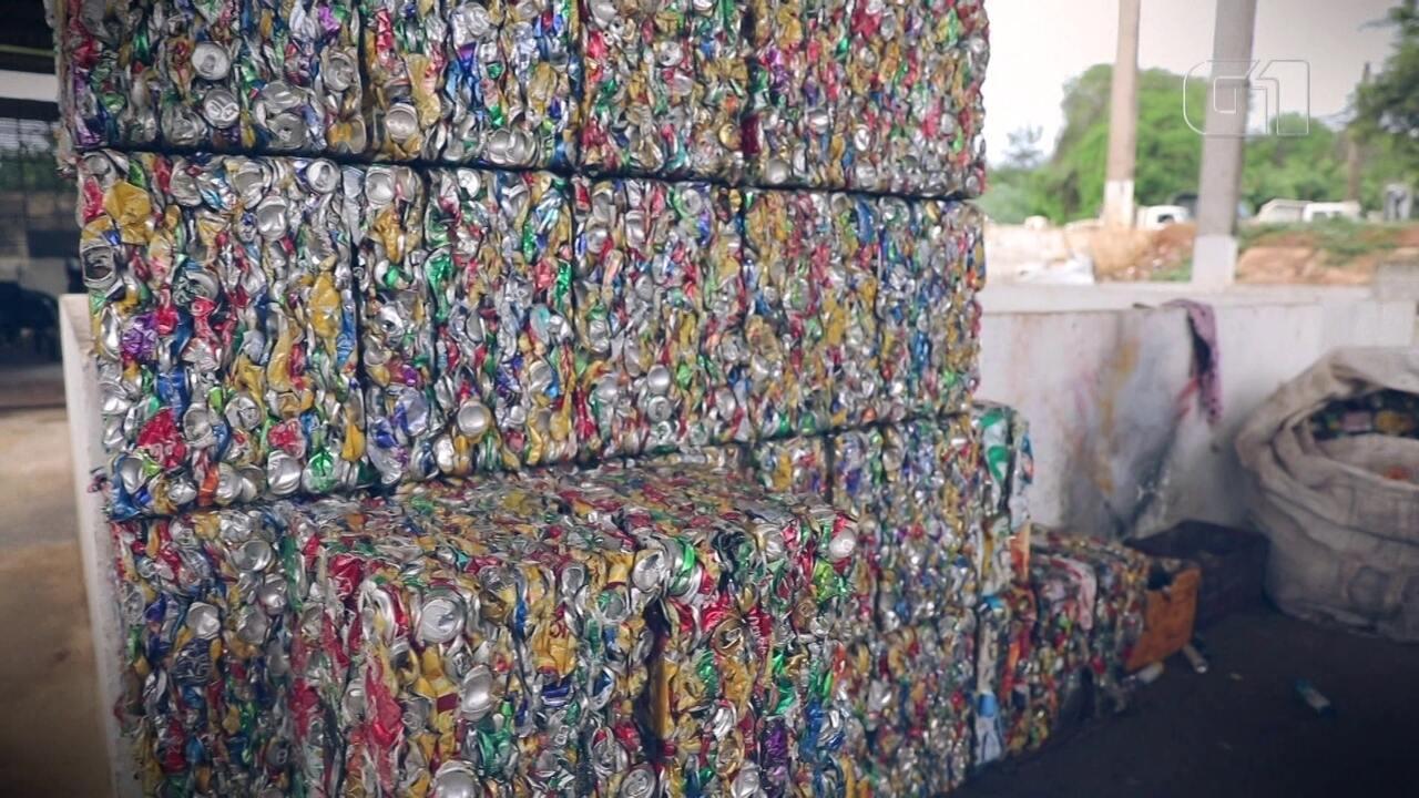 Conheça para onde vai o lixo de Fernando de Noronha