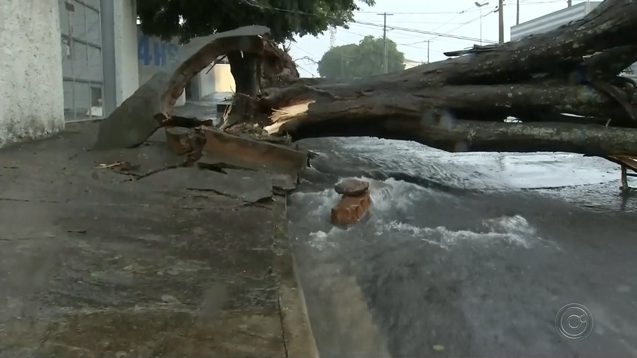 Tempestade em Marília causa alagamento e estragos