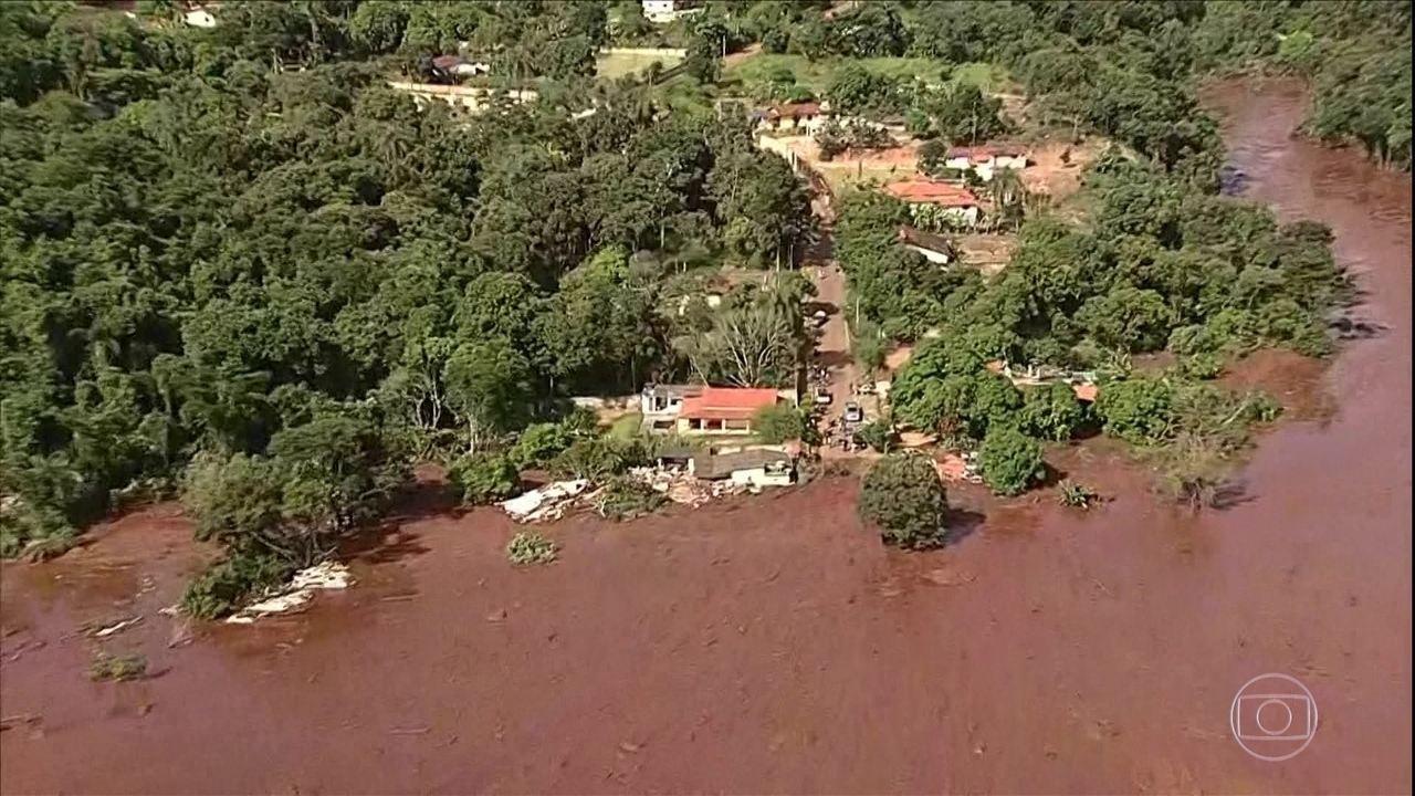 Especialistas afirmam que há danos ambientais graves em Brumadinho