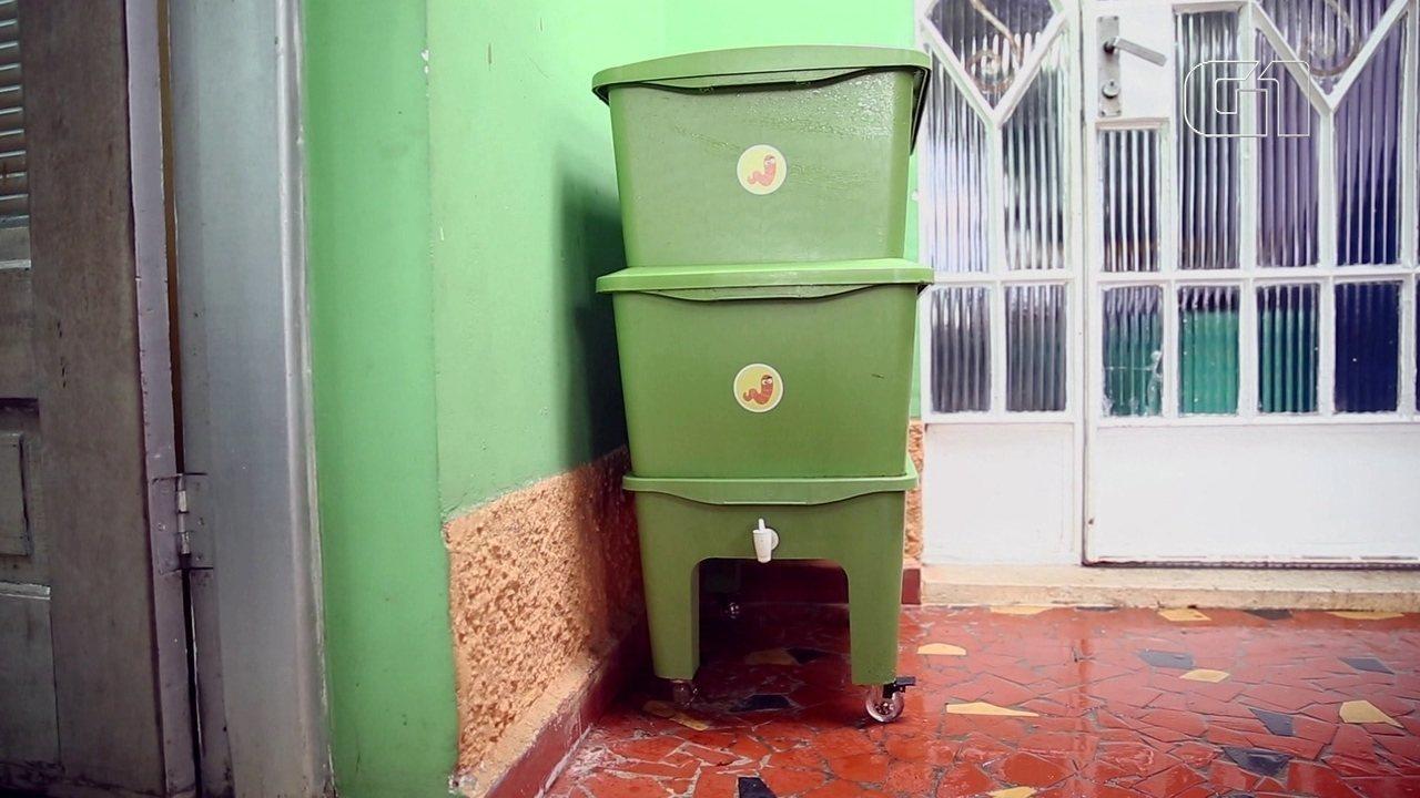 Compostagem: veja o passo a passo para transformar lixo orgânico em adubo