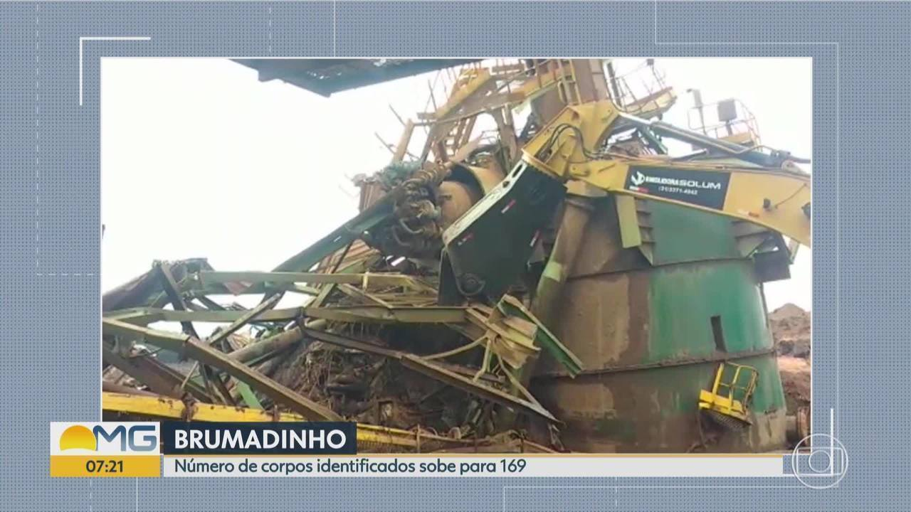 Sobe para 169 o número de mortos identificados na tragédia da Vale, em Brumadinho