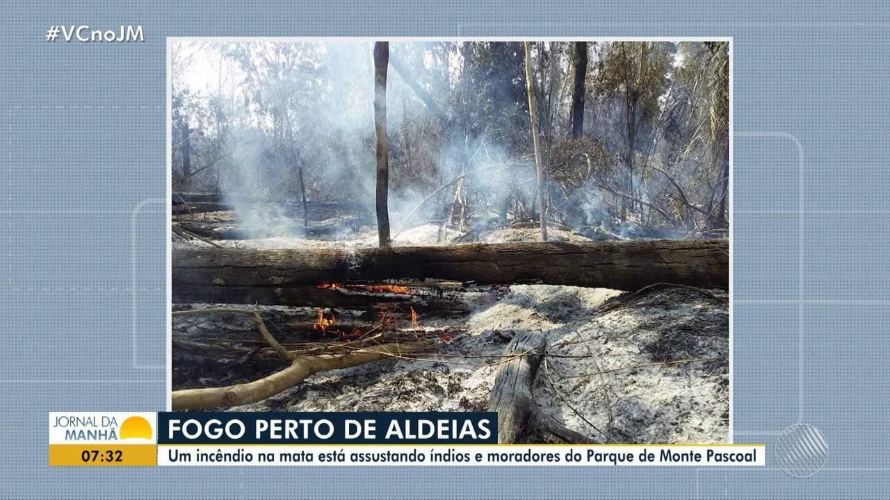Incêndio assusta moradores que moram na região do Parque do Monte Pascoal, no sul da Bahia