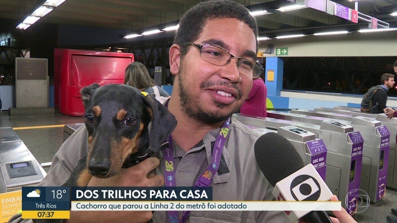 Funcionário do Metrô adota cão abandonado