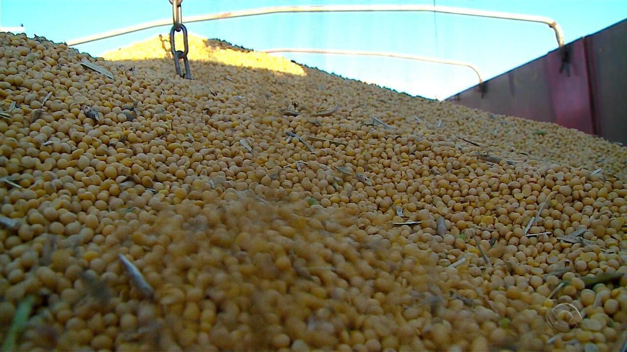 Próximo ao fim da colheita, valor de venda da soja preocupa produtores do RS