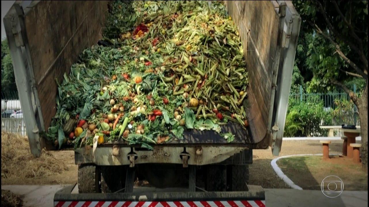 Brasileiro desperdiça, por ano, 41 quilos de comida