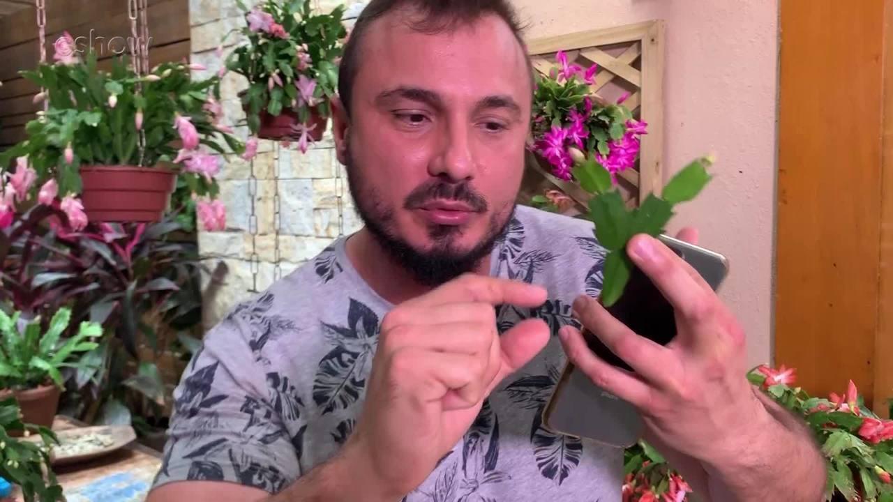 Murilo Soares responde perguntas dos internautas sobre flor-de-maio