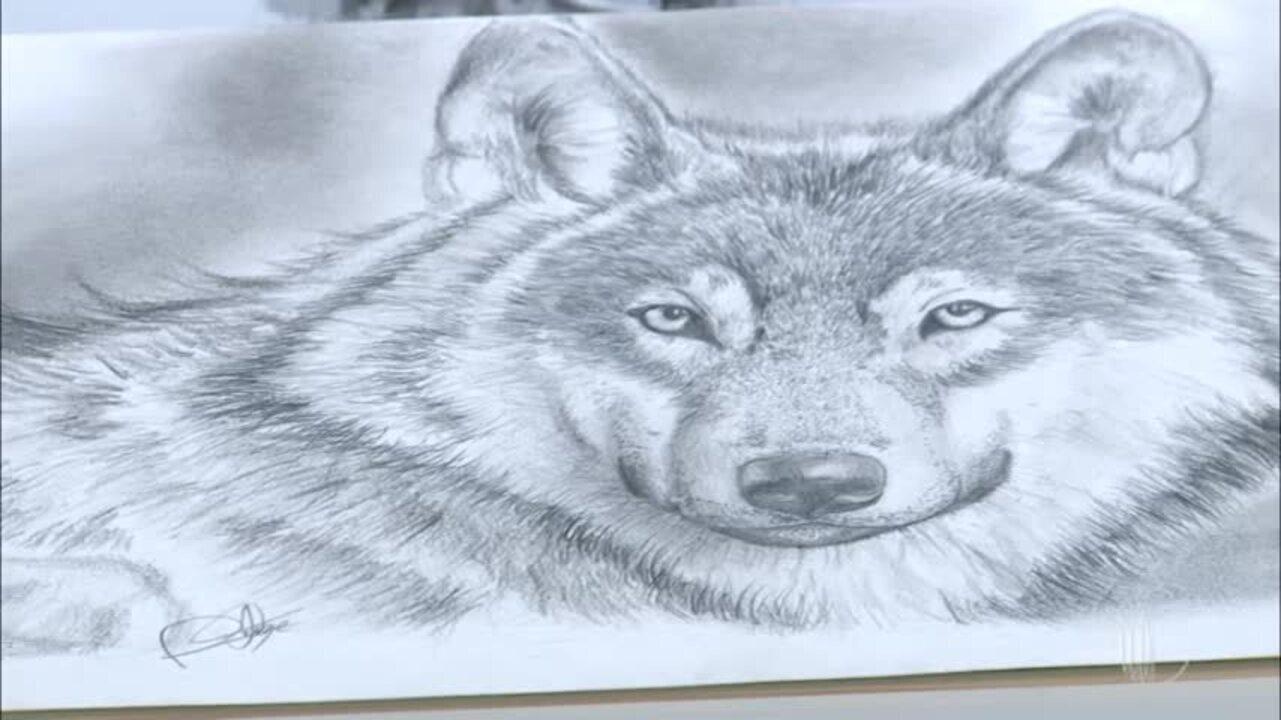 Meu Talento é Mais: Diego mostra seus desenhos