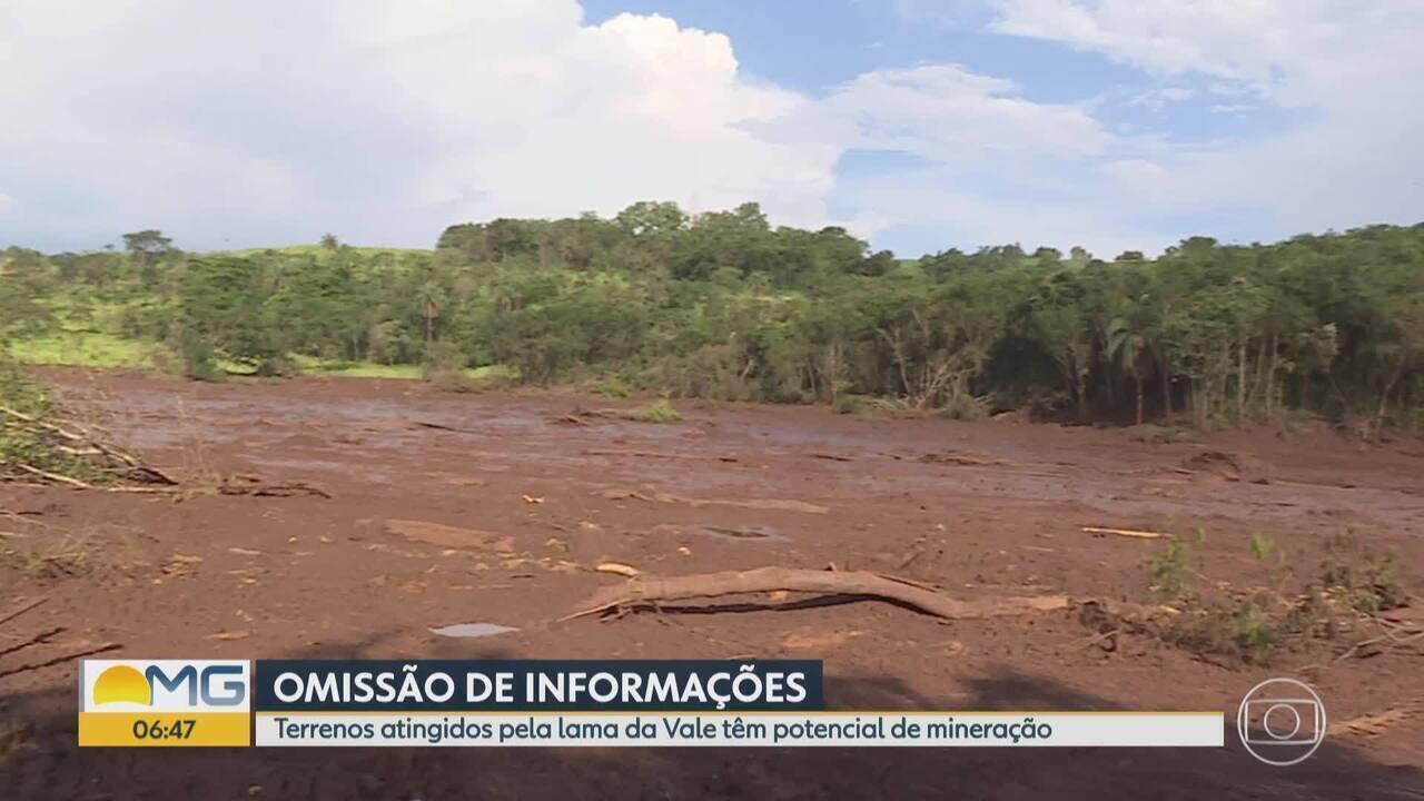 Brumadinho: terrenos atingidos pela lama da Vale têm potencial de mineração