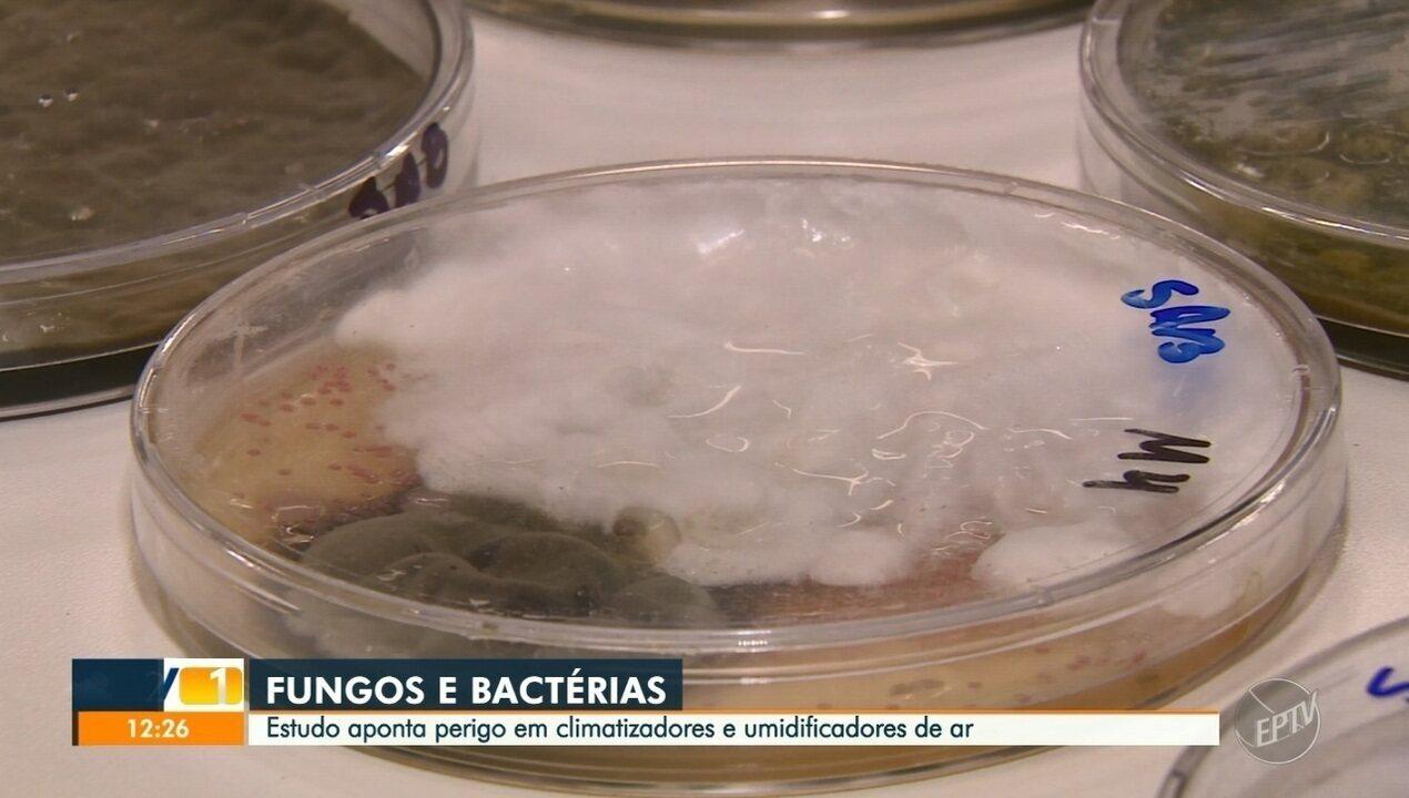 Estudo aponta fungos e bactérias em climatizadores e umidificadores de ar