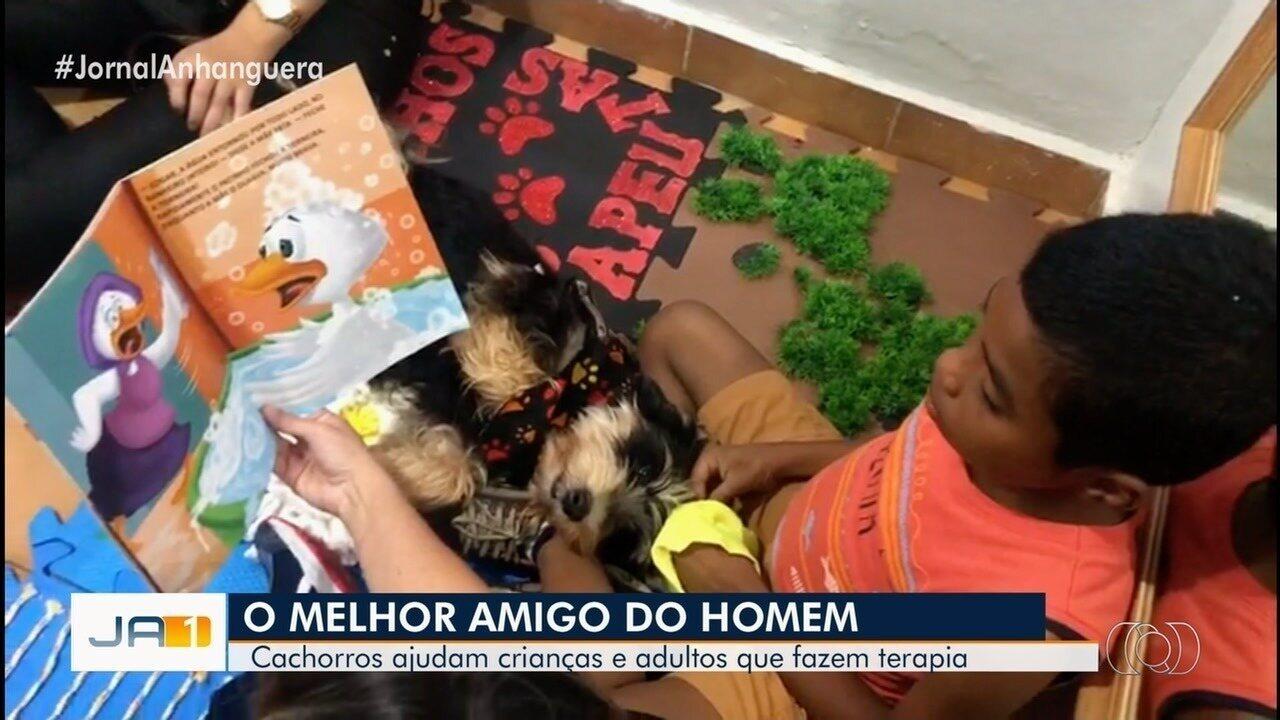 Menino com autismo começa a conversar após terapia com cães, em Morrinhos