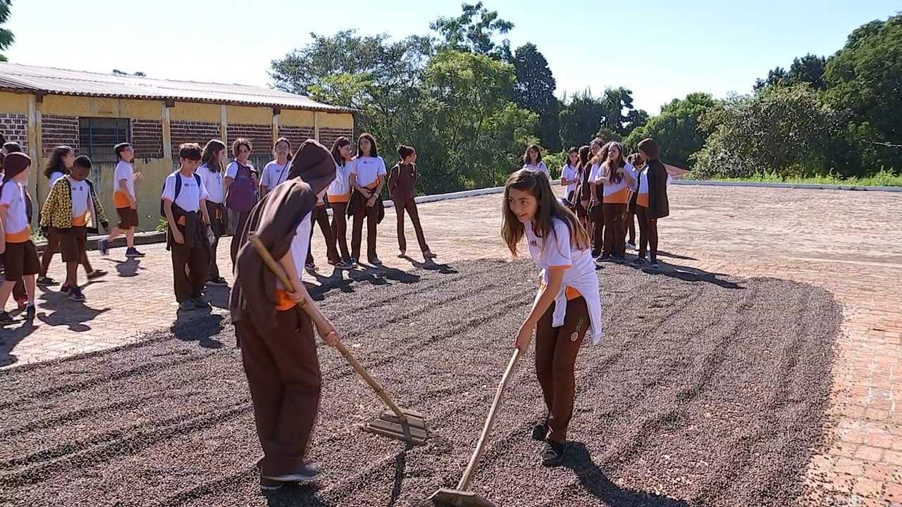 Fazenda recebe visitantes para mostrar como é a produção de café