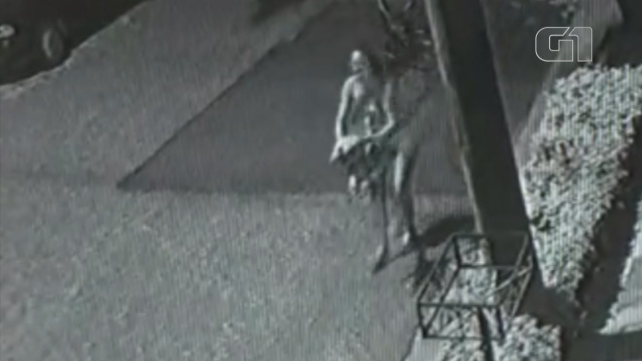 Vídeo mostra jovem jogando gato em direção a cachorro em Sorocaba