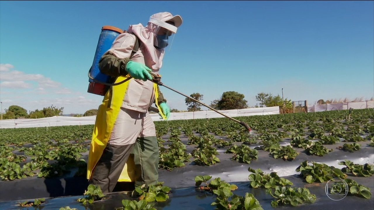 Anvisa muda regras para classificação de risco de agrotóxicos