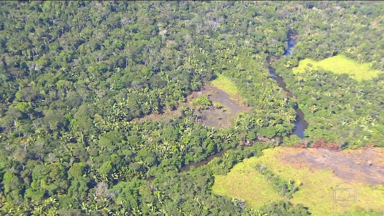 MP e PF investigam invasão e loteamento de terras indígenas em Rondônia