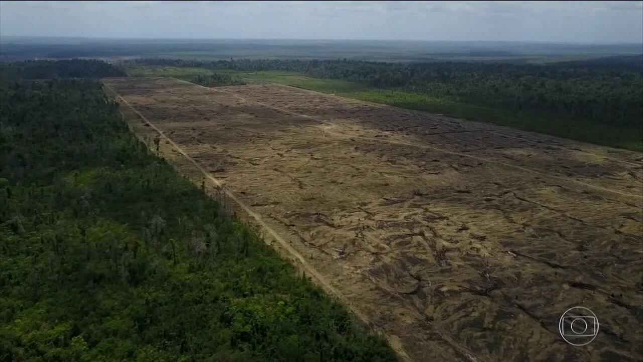 Governadores da Amazônia Legal lamentam posições do governo brasileiro