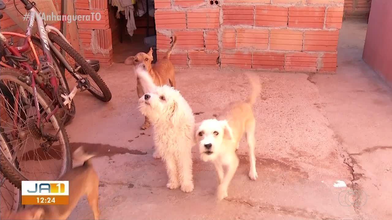 Moradora denuncia falta de assistência do CCZ para cães doentes