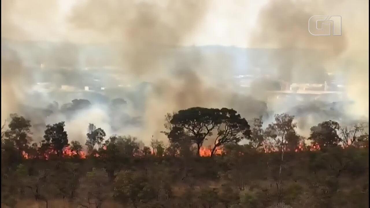 Incêndio atinge Parque Burle Marx, no centro de Brasília
