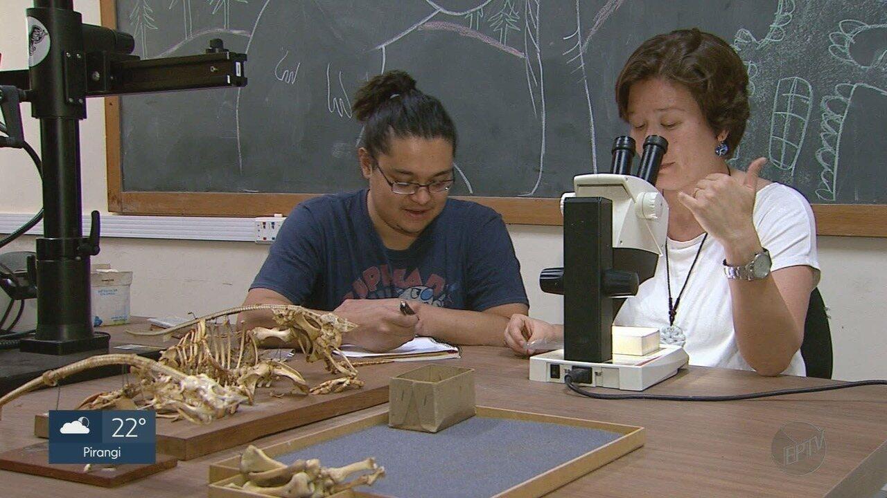Pesquisadores estudam réptil que teria vivo há 200 milhões de anos