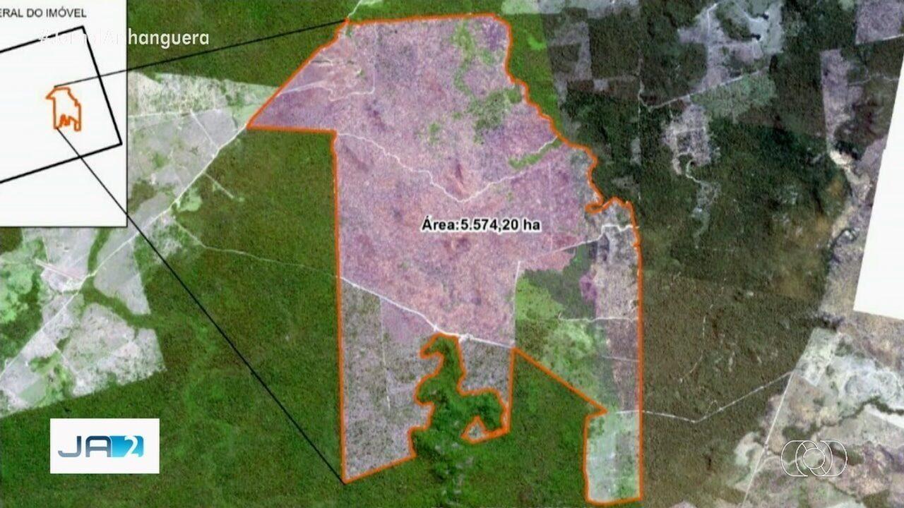 Polícia prende em Goiânia homem suspeito de desmatar área na Amazônia