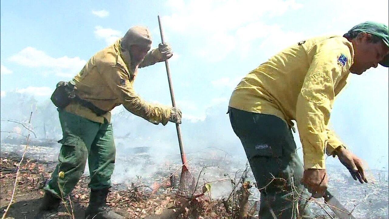 Forças Armadas, bombeiros e voluntários trabalham no combate aos incêndios no Norte