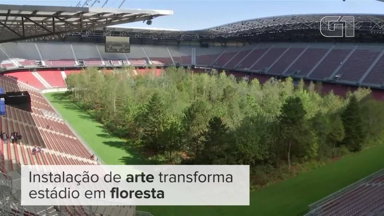 Instalação de arte transforma estádio em floresta na Áustria
