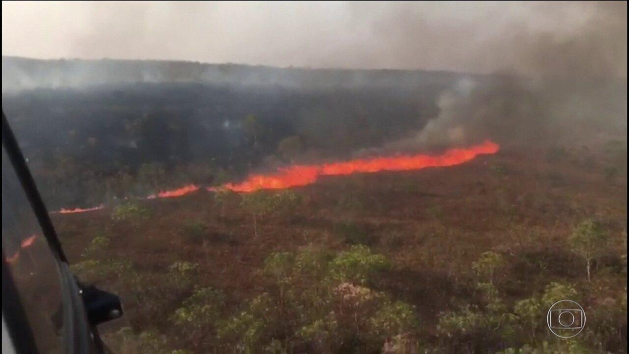 Número de focos de queimadas no Brasil é o maior em sete anos, diz Inpe