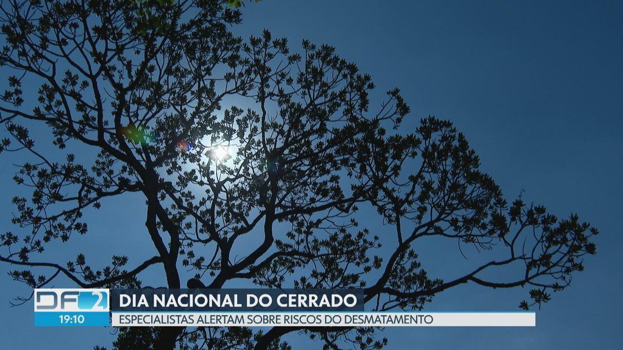 No dia nacional do Cerrado, especialistas alertam sobre a importância da preservação