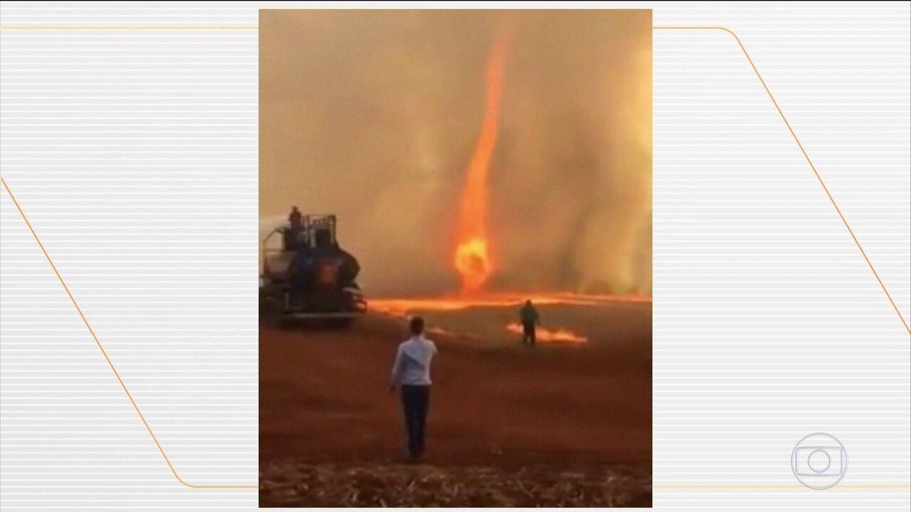 Redemoinho de fogo se forma no meio de uma queimada em fazenda de Goiás