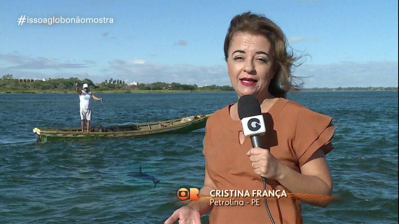 'Isso a Globo Não Mostra' #35: tubarão
